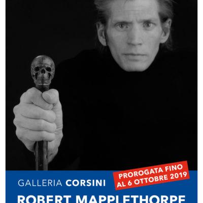Robert Mapplethorpe. L'obiettivo sensibile